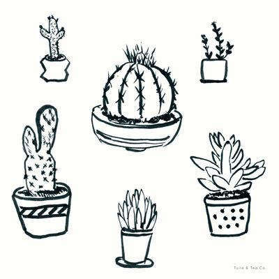 Prickly Little Things Original Print