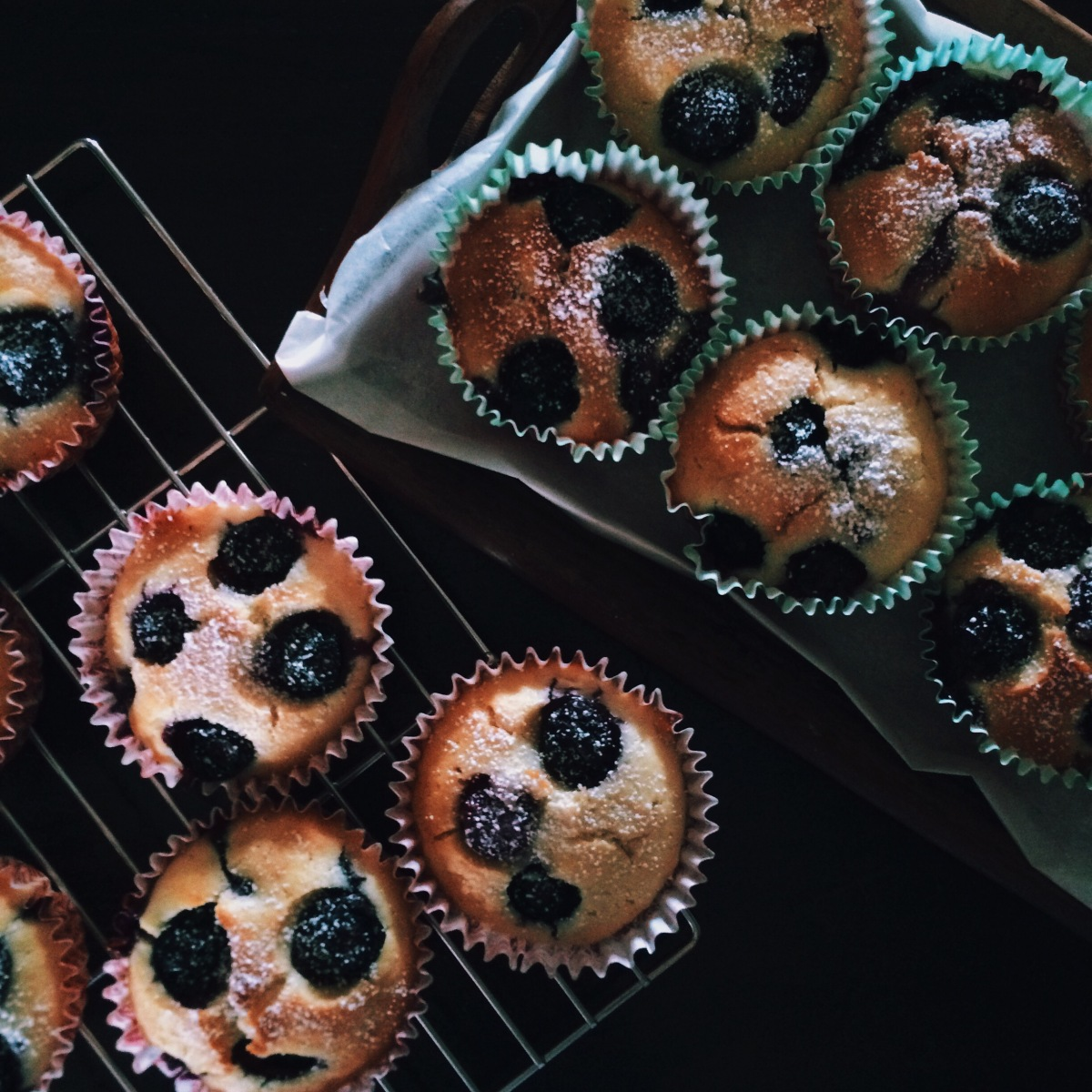 Basic Blueberry Muffins